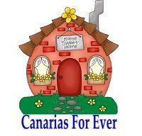 Canarias For Ever