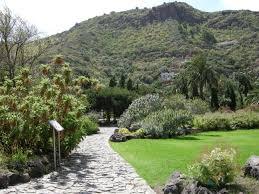 Jardín Botánico Vieray Clavijo