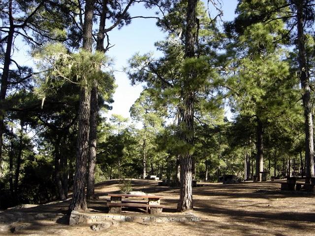 Parque de Tamadaba